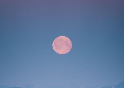 Måne i blåtime